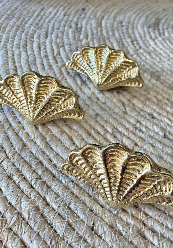 Gold Clam Brass Door Knobs