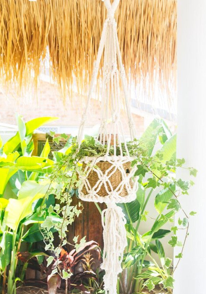cabo gypsy macrame pot plant holder