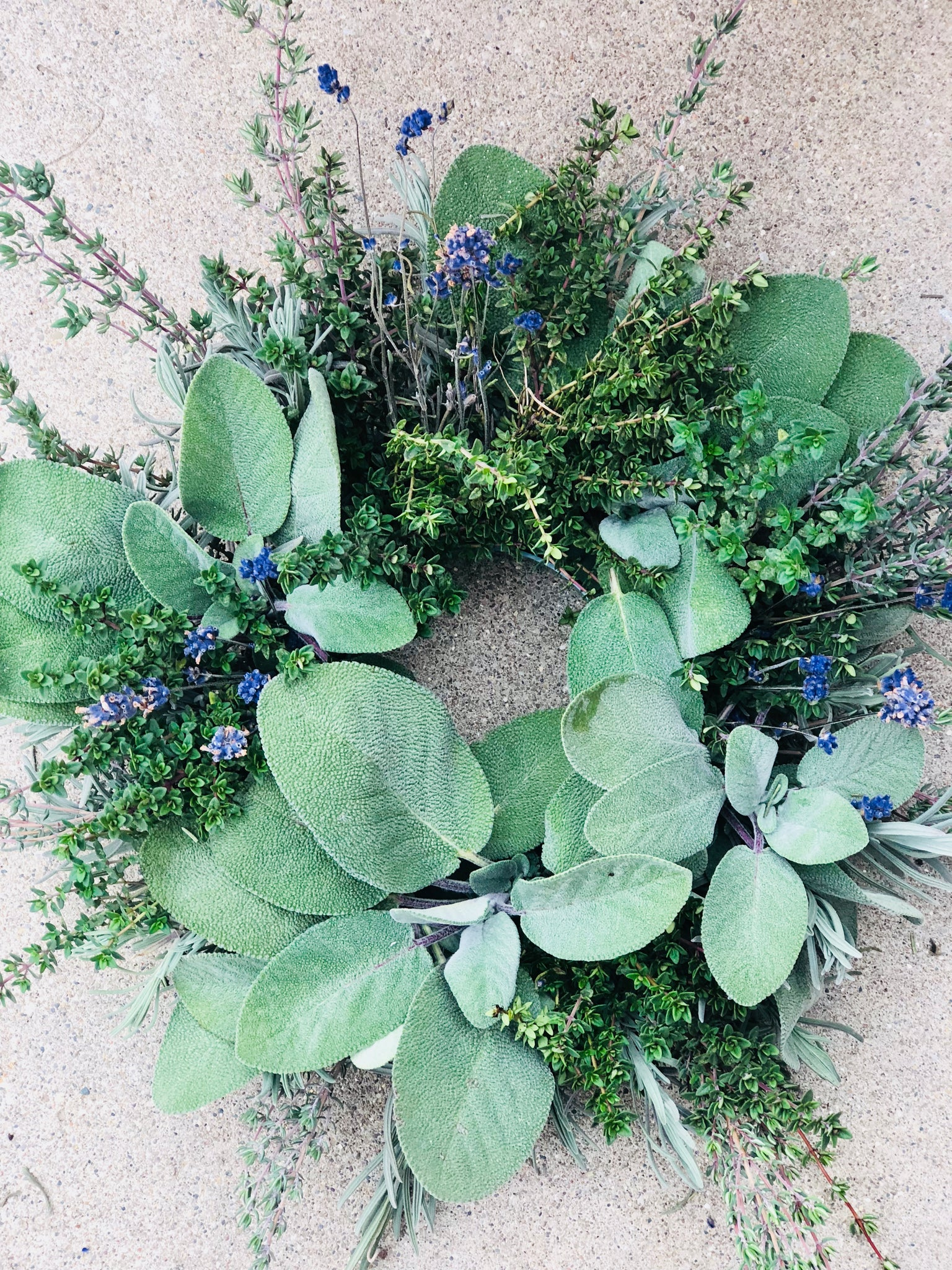 Fresh Herbal Culinary Wreath Workshop