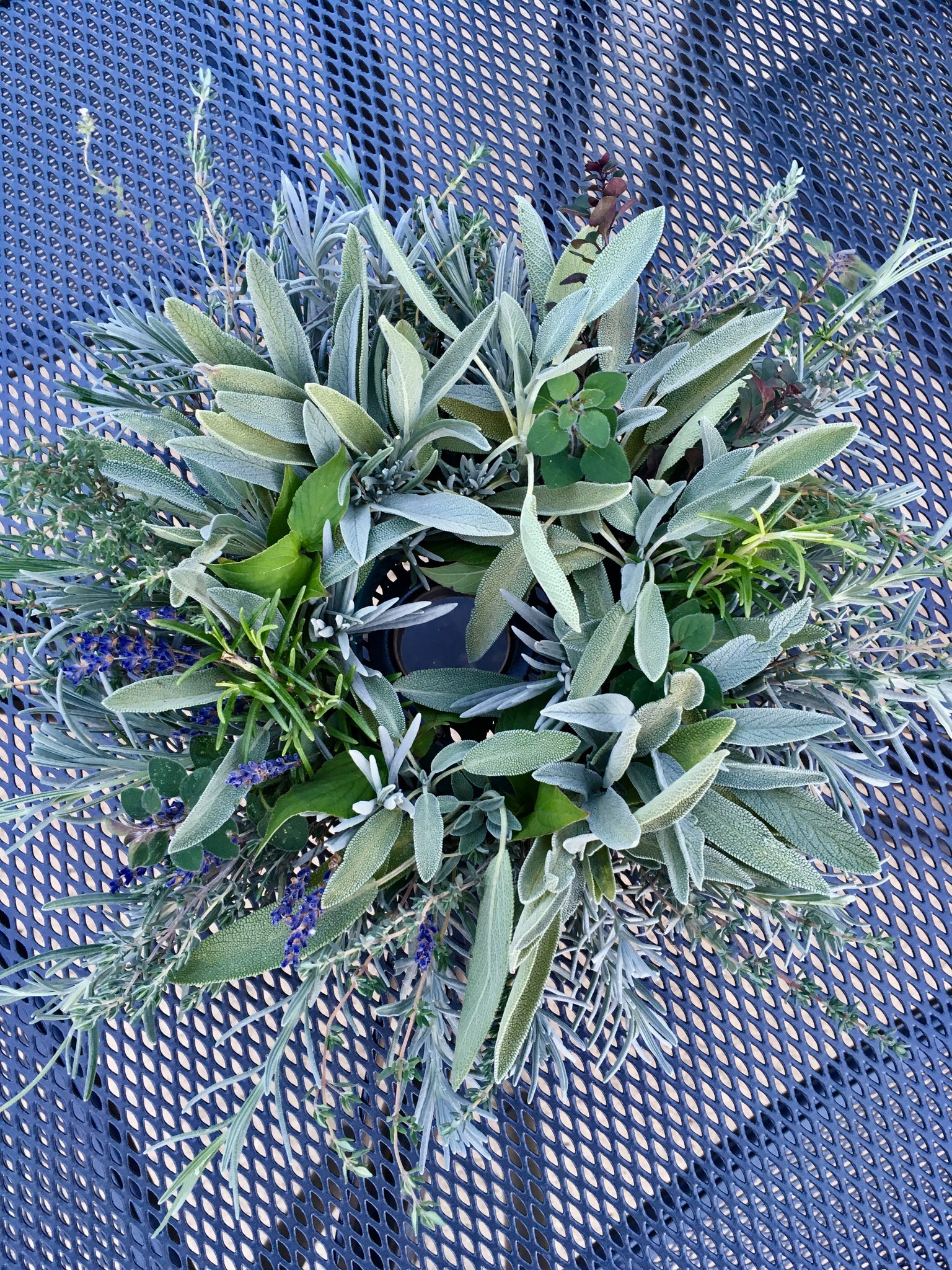 Herbal Wreath class - November 19th