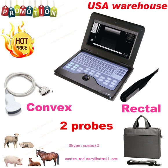 VET Veterinary Ultrasound Scanner For Equine/cows/sheep use Rectal +Convex probe 658126976787