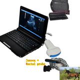 Vet Animal Veterinary Ultrasound Scanner Machine Convex + Rectal Probe 3D Sheep 190891941893