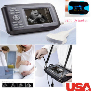 CE Professional Medical Ultrasound Scanner Machine Convex Probe Abdominal + Gift 190891827272