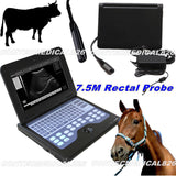 Veterinary Bovine&equine Ultrasound Scanner CMS600P2-VET with endorectal probe 658126923446