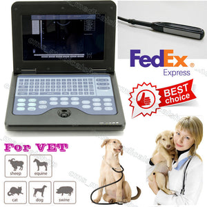 VET Veterinary Ultrasound Scanner Machine+6.5mhz Rectal probe,From U.S shipping