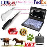 Veterinary portable Ultrasound Scanner Machine Animal rectal/Linear probes,600P2 658126944441