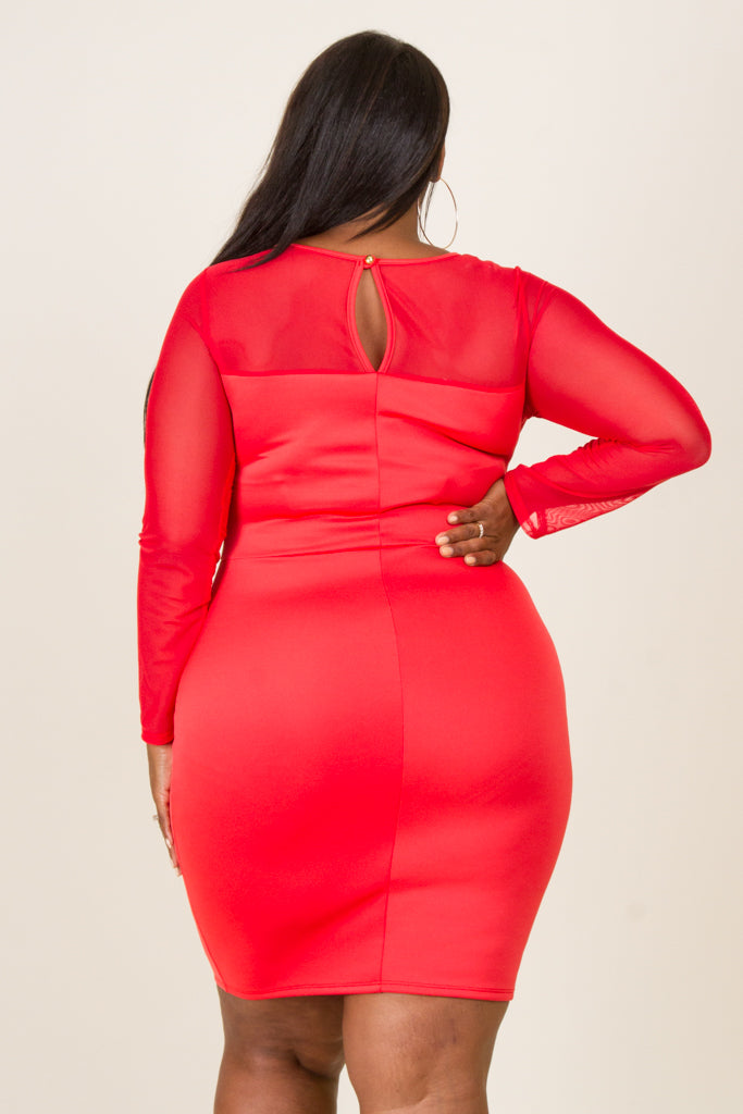 Plus Size Mesh Contrast Mini Dress