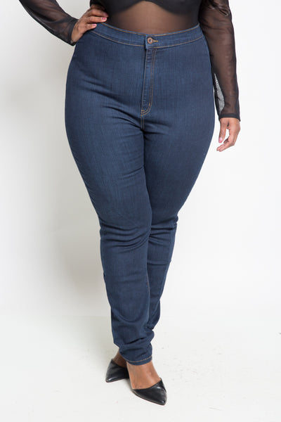 Plus Size High Rise Basic Skinny Jeans