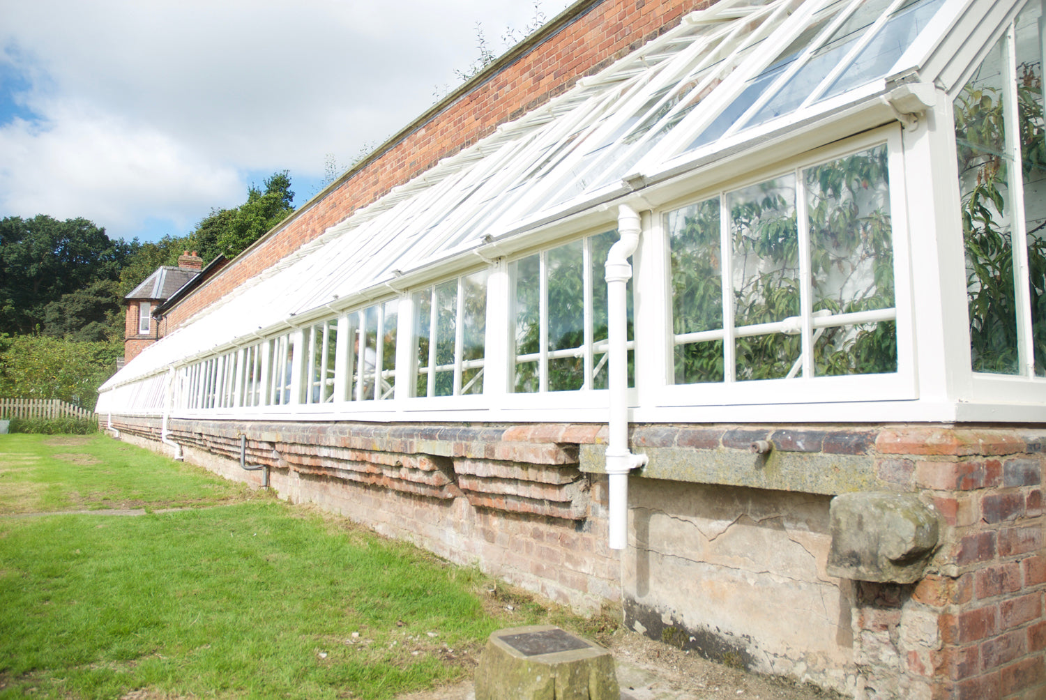 Tatton park Victorian glass houses restoration