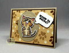 Just Kitten Around Clear Stamps - Joy Clair - 9