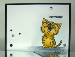 Just Kitten Around Clear Stamps - Joy Clair - 15