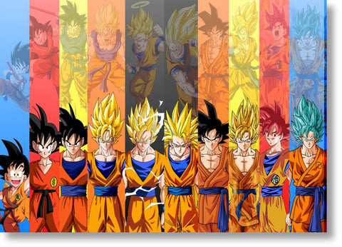 Cuadros de Dragon Ball Z