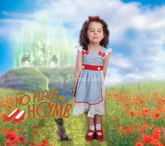 Princess Dress - Dorothy Wizard of Oz Inspired