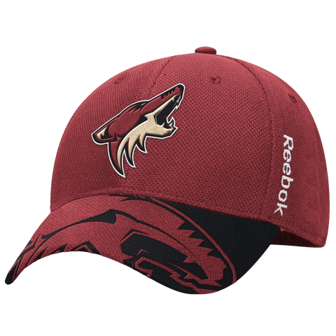 Arizona Coyotes 2015 Draft Cap