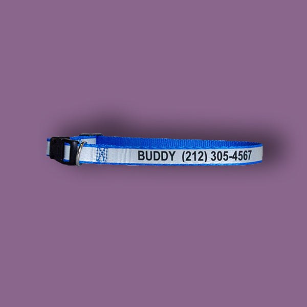 Personalized Reflective Dog Collars (5 colors available)