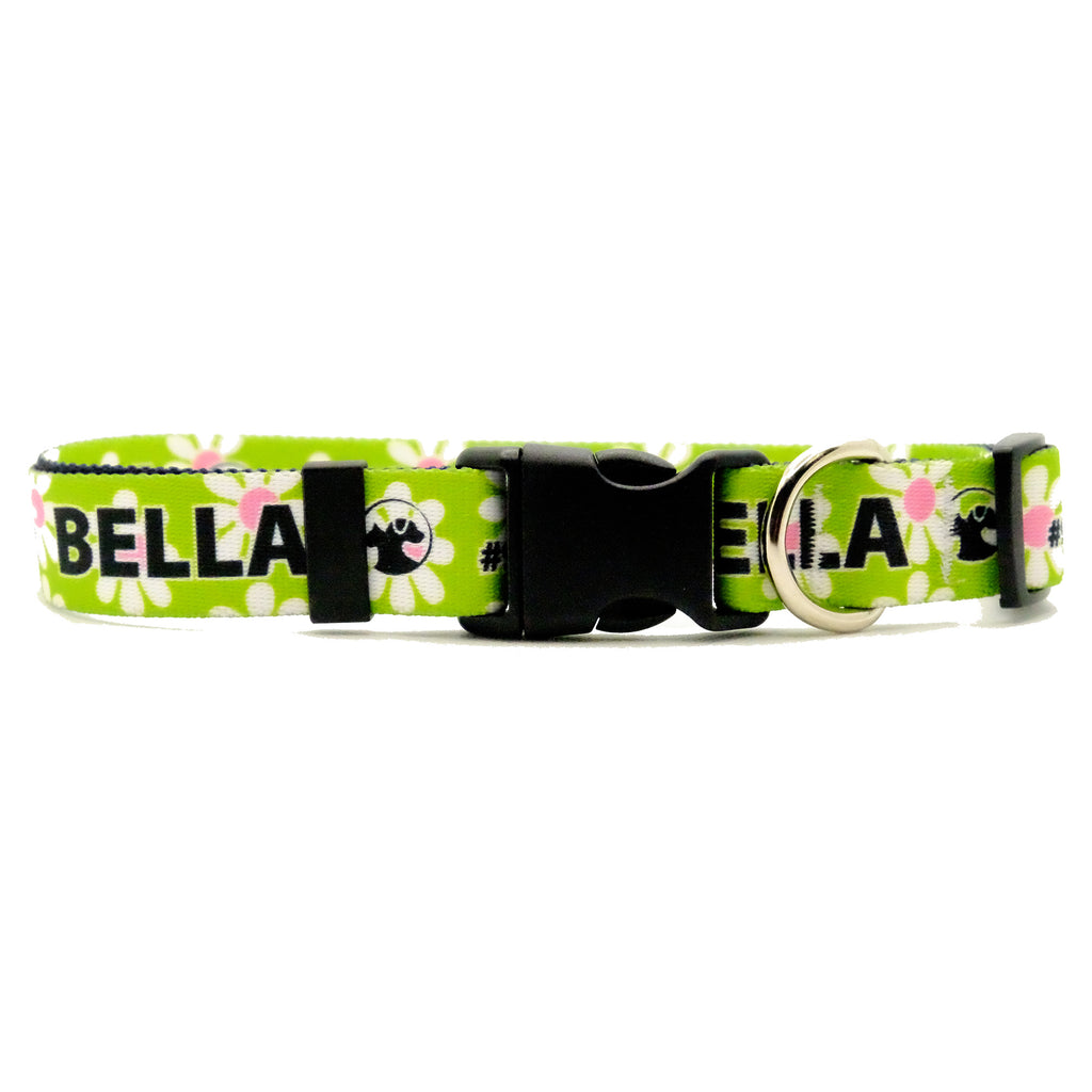 Personalized Floral Dog Collars