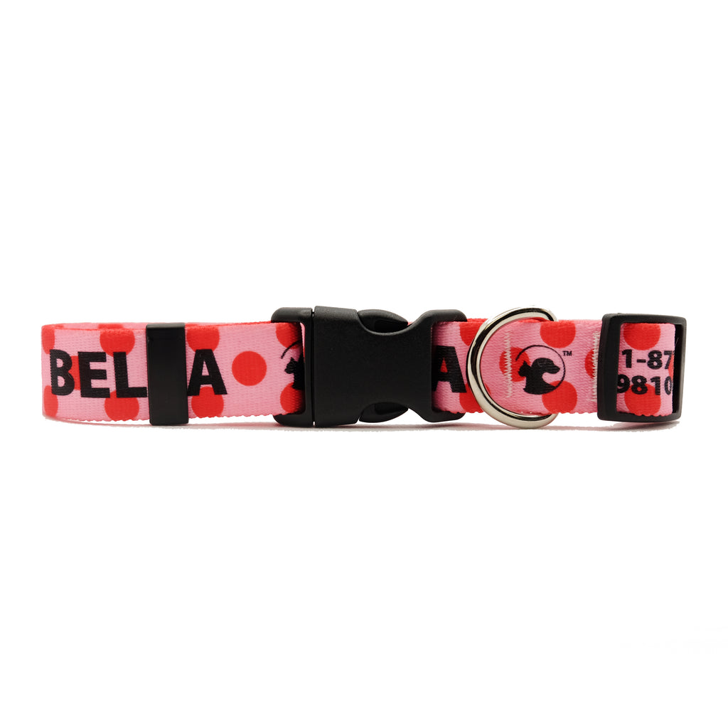 Personalized Polka Dot Dog Collars (3 colors available)