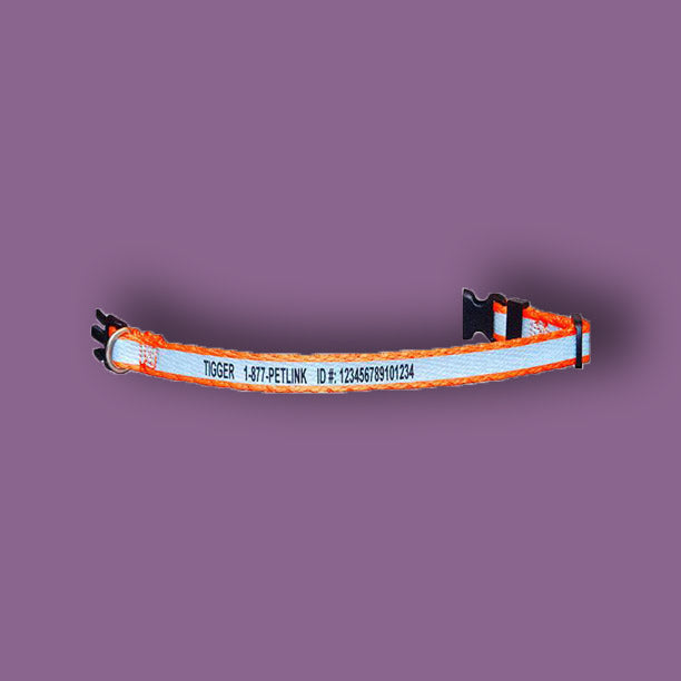 Personalized Reflective Break-Away Cat Collar (5 colors available)