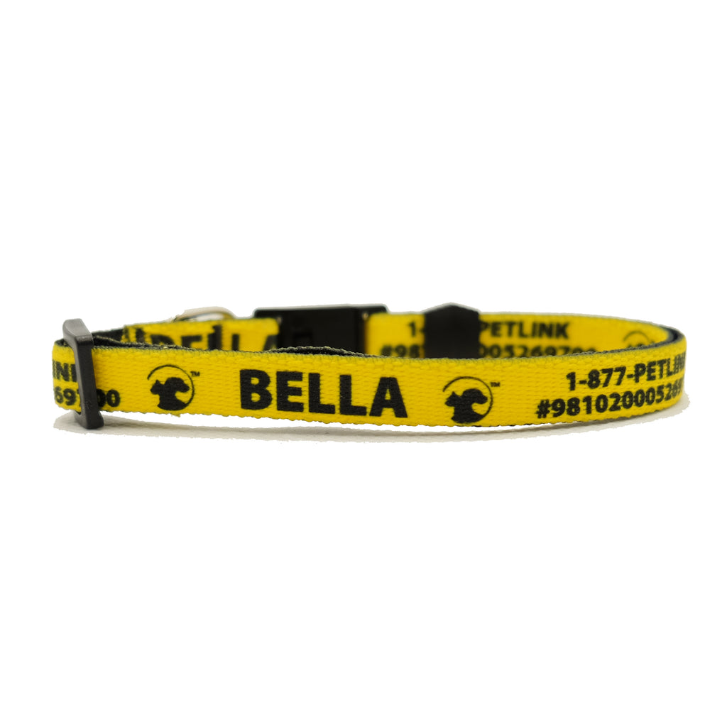Personalized Solid Break-Away Cat Collars