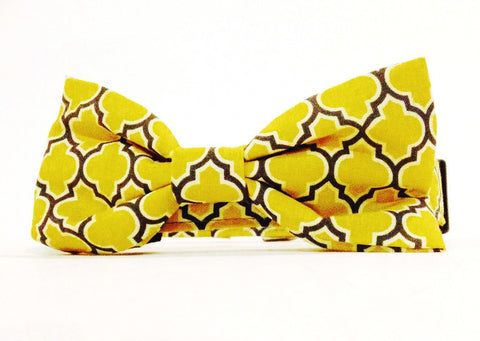 Mellow Yellow Bulldog Collar