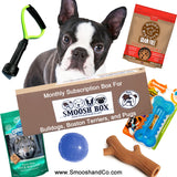Smoosh Box for Boston Terriers - Dog & Human