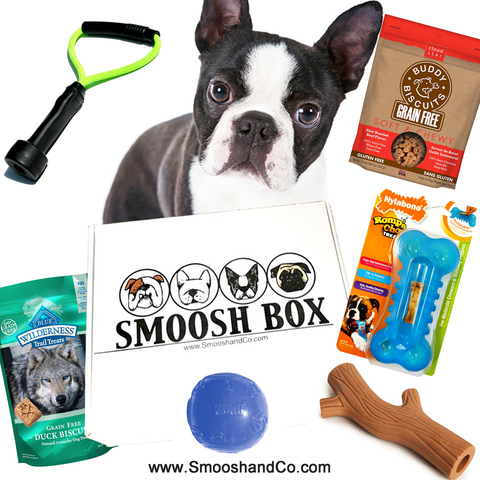 Smoosh Box MINI for Boston Terriers - Dog Only