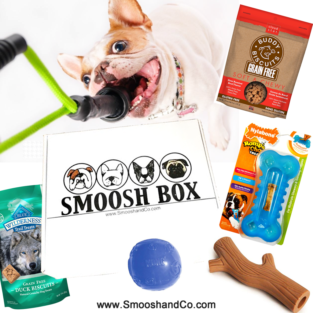 Smoosh Box for French Bulldogs - Dog Only