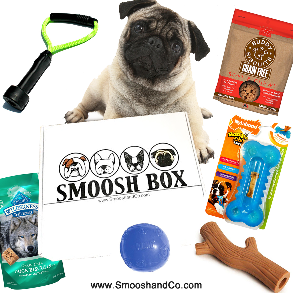 Smoosh Box for Pugs - Dog Only