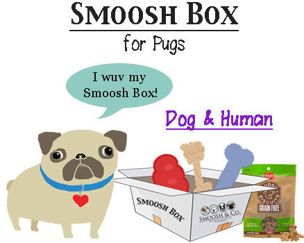 Smoosh Box for Pugs - Dog & Human