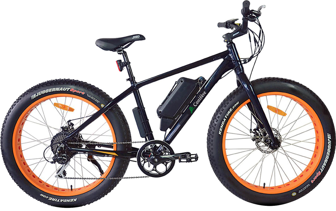 Electric Bike - Motocross C00Z/350