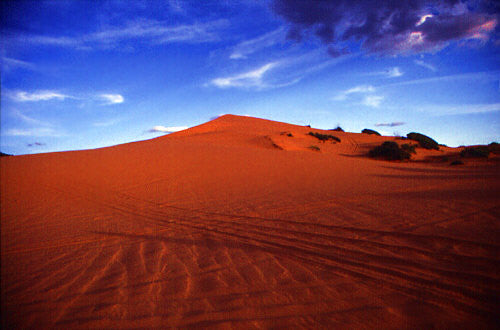 Top 5 Sand Dune Destinations