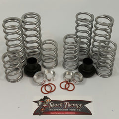 Shock Therapy-Dual Rate Spring Kit (DRS) S 900 2015-16 4 Seat - planetrzr.com