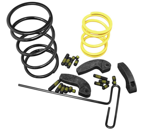 Dalton Pro Clutch Spring Kits Fits 2010 only RZR and RZR-S