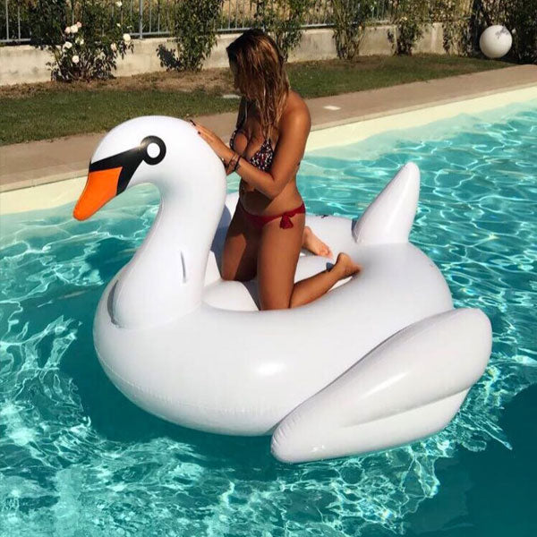 White Swan - 40% off