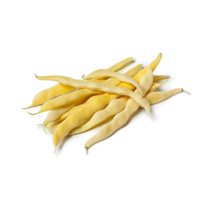 Cherokee Golden Bush Bean