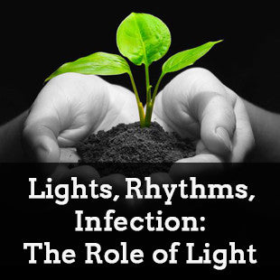 Lights, Rhythms, Infection: The Role of Light and the Circadian Clock in Determining the Outcome of Plant–Pathogen Interactions