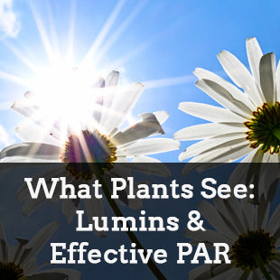 What Plants See: Separating Lumens from Effective PAR (EPAR)