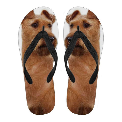 Irish Terrier Flip Flops For Women-Free Shipping-Paww-Printz-Merchandise