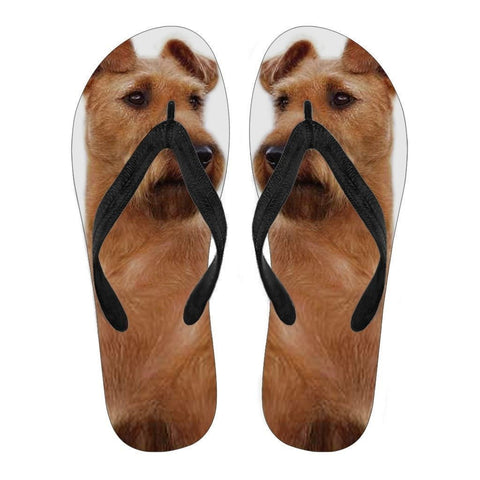 Irish Terrier Flip Flops For Men-Free Shipping-Paww-Printz-Merchandise