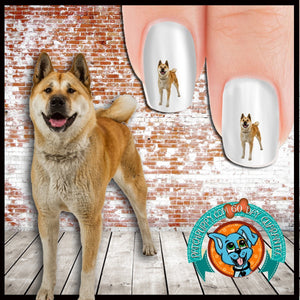 Akita Standing Proud Nail Art (NOW 50% MORE FREE)