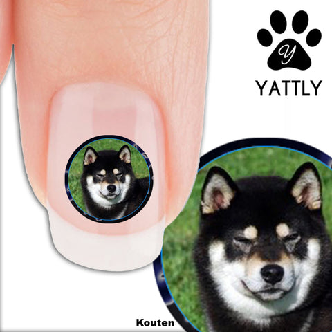 Shiba Inu - Kouten - Nail Art Decals (Now! 50% more FREE)