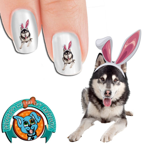 Alaskan Malamute Easter Bunny Nail Art Decals (Now! 50% more FREE)