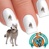 Alaskan Malamute Side Glance Nail Art Decals (Now! 50% more FREE)