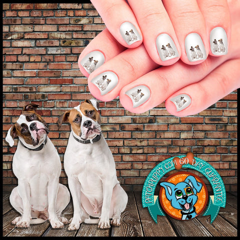 American Bulldog Friends Nail Art Decals (Now! 50% more FREE)