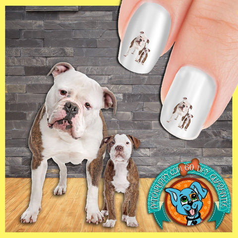 American Bulldog Mothers Love Nail Art Decals (Now! 50% more FREE)