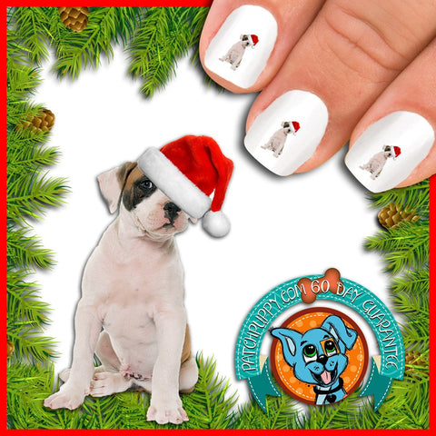 American Bulldog Puppy in Santa Hat Nail Art Decals (Now! 50% more FREE)