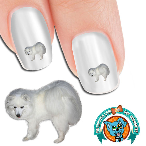 American Eskimo Curious Nail Art (NOW 50% MORE FREE)