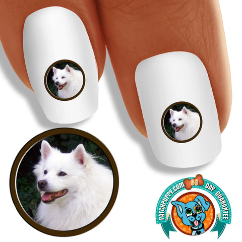 American Eskimo Portrait Nail Art (NOW 50% MORE FREE)