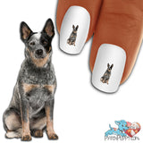 Australian Cattle Dog Sitting Nail Art (NOW 50% MORE FREE)