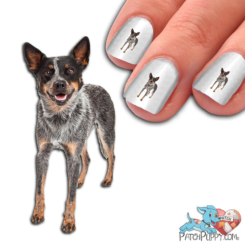 Australian Cattle Dog Standing Nail Art (NOW 50% MORE FREE)